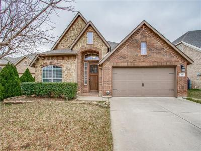 Grand Prairie Single Family Home For Sale: 119 Vintage Drive