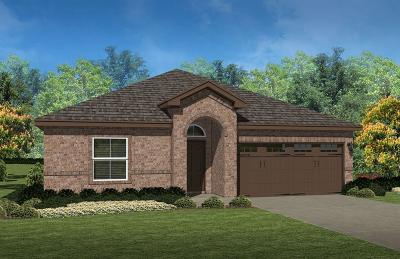 Fort Worth Single Family Home For Sale: 9104 Edenberry Lane