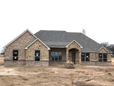 Parker County Single Family Home For Sale: 2041 Dash Lane