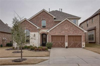 Denton County Single Family Home For Sale: 8813 James Drive
