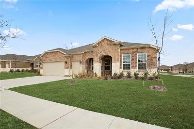 Frisco Single Family Home For Sale: 6410 Walnut Hill Court