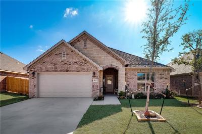 Parker County Single Family Home For Sale: 632 Zachary Drive