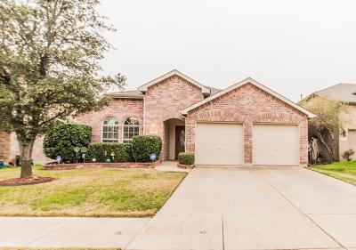 Little Elm Single Family Home For Sale: 220 Bluefinch Drive