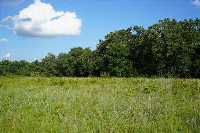Stephenville Farm & Ranch For Sale: 987 Private Road 1129