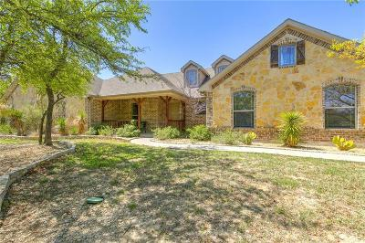 Parker County Single Family Home For Sale: 125 Miramar Circle