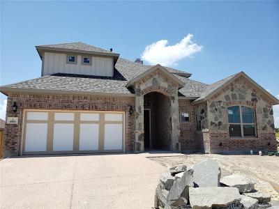 Benbrook Single Family Home For Sale: 6800 Fire Dance Drive
