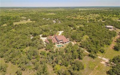 Parker County, Hood County, Palo Pinto County, Wise County Farm & Ranch For Sale: 20600 S Fm 4