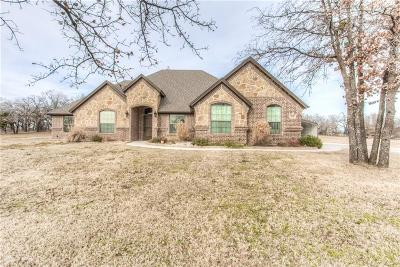 Parker County Single Family Home For Sale: 101 Chloe Court