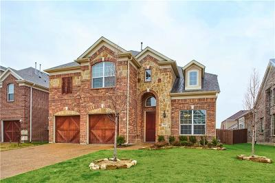 Plano Single Family Home For Sale: 700 Jagged Way