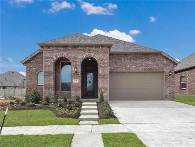Single Family Home For Sale: 1309 Swan Trail