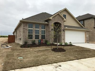 Fort Worth Single Family Home For Sale: 1720 Rio Costilla Road