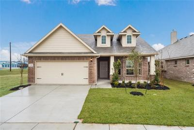 Tarrant County Single Family Home For Sale: 1308 Surfside Drive