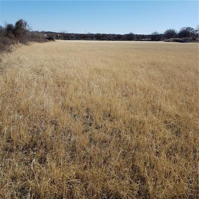 Palo Pinto County Farm & Ranch For Sale: 20564a S Highway 281