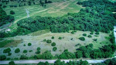Parker County Farm & Ranch For Sale: 0000 Dill Road