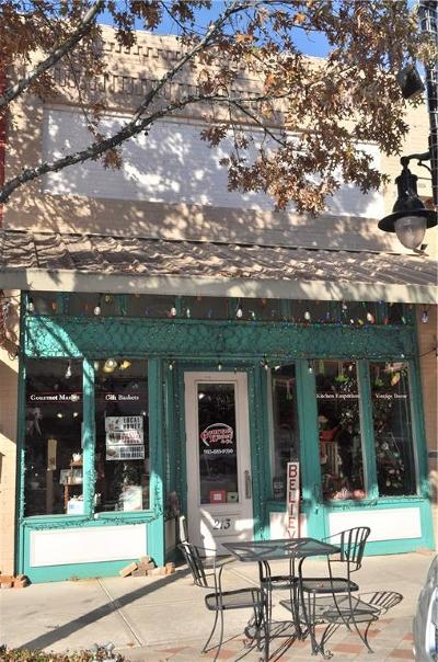 Commercial For Sale: 213 Main Street