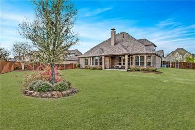 Allen Single Family Home For Sale: 873 Open Sky Court