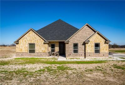 Parker County Single Family Home For Sale: 203 Young Road