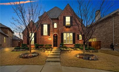 Allen Single Family Home For Sale: 837 Twilight Road