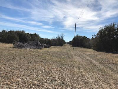 Mills County Farm & Ranch For Sale: Tbd #3 S County Road 412