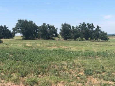 Stephenville Residential Lots & Land For Sale: #4 County Road 386
