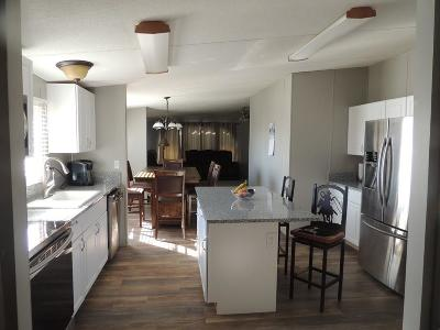 Cooke County Single Family Home Active Option Contract: 1497 County Road 208