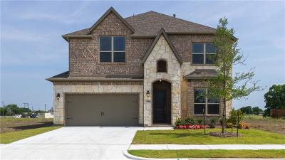 Rowlett Single Family Home For Sale: 7009 Willow Wood Street