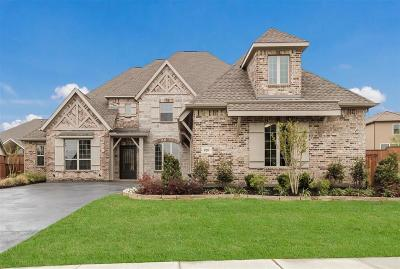 Prosper Single Family Home For Sale: 820 Star Meadow Drive