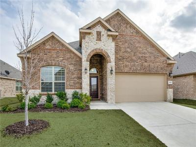 Little Elm Single Family Home For Sale: 1116 Lake Meadow Lane