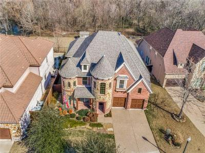 Mckinney Single Family Home For Sale: 2704 Mountain Creek Drive