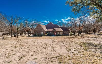 Springtown Single Family Home Active Contingent: 2929 J E Woody Road