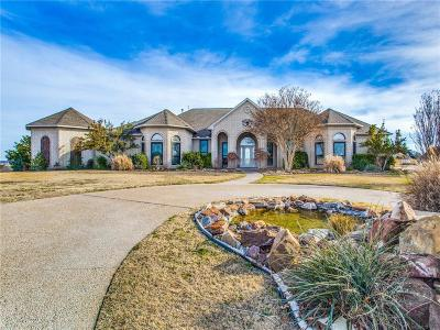 Weatherford Single Family Home For Sale: 119 Eagle View Court