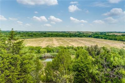 Comanche Farm & Ranch For Sale: 1100 County Road 235