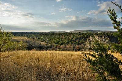 Palo Pinto County Farm & Ranch For Sale: Highway 16