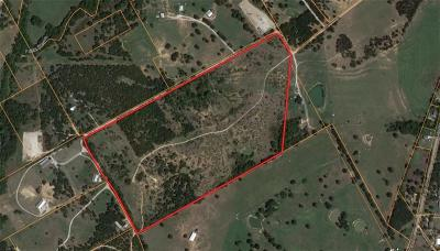 Weatherford Farm & Ranch For Sale: Tbd