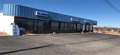 Palo Pinto County Commercial For Sale: 103 N Fm Road 2353