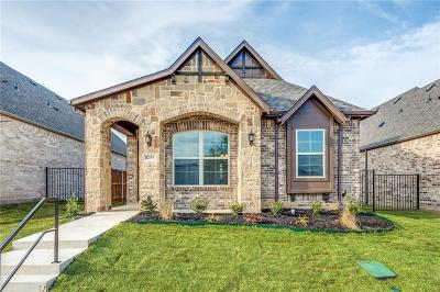 North Richland Hills Single Family Home For Sale: 8255 Northeast Parkway