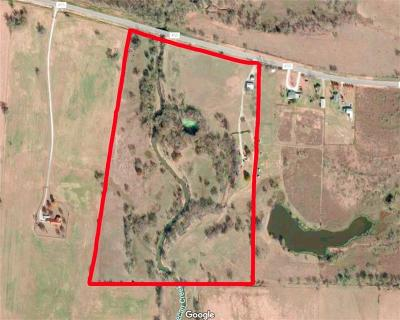 Pilot Point Farm & Ranch For Sale: 12820 Fm 455 E