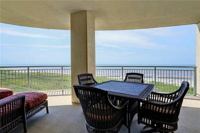 Galveston County Condo For Sale: 801 E Beach Drive #BC0500