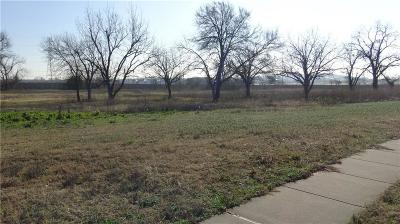 Lewisville Commercial Lots & Land For Sale: Mario Court