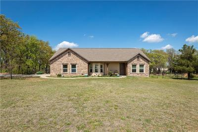 Springtown Single Family Home For Sale: 490 Eagles Way