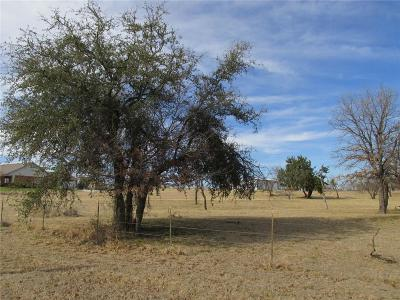 Parker County Residential Lots & Land For Sale: Tr. 4 Mark Layne Road