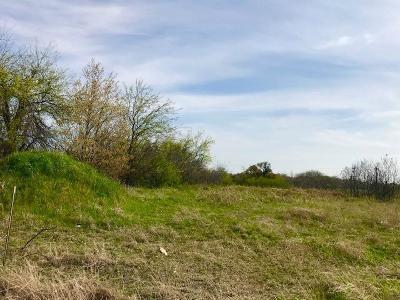 Springtown Residential Lots & Land For Sale: 110 Cowboys Lane