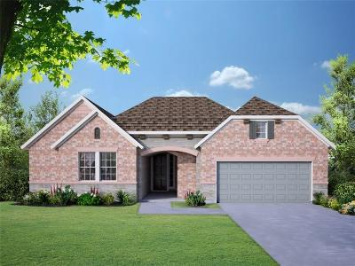 Mckinney Single Family Home For Sale: 709 Marioneth Drive