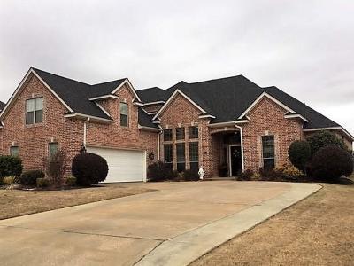 Reno Single Family Home For Sale: 582 Nicole Drive