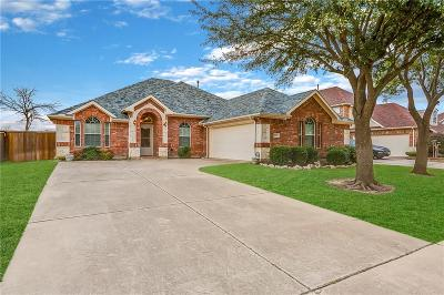 Allen Single Family Home For Sale: 1021 Rushmore Drive