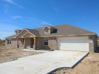 Springtown Single Family Home Active Kick Out: 232 Springwood Ranch Loop
