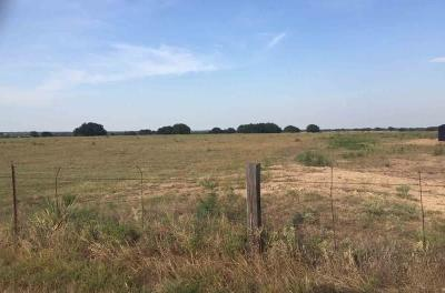Brown County Farm & Ranch For Sale: 11401 Fm 1176
