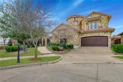 McKinney Single Family Home For Sale: 6212 River Highlands Drive
