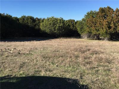 Weatherford Farm & Ranch For Sale: 0000 Lands Way N