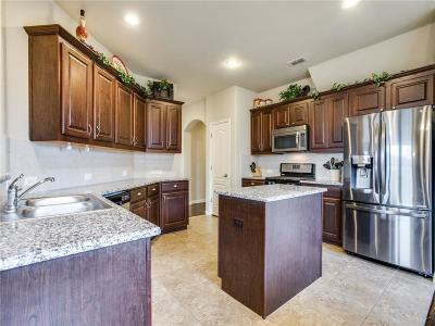 Denton Single Family Home For Sale: 6405 Meandering Creek Drive
